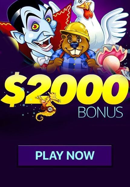 Bonuses are Not All That Cirrus Casino Promises! Check it Out!